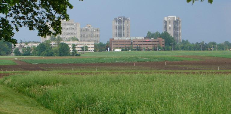 Government provides land for new Ottawa hospital