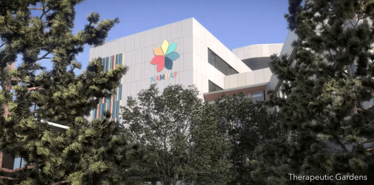 Consortium named for new mental health and addictions hospital