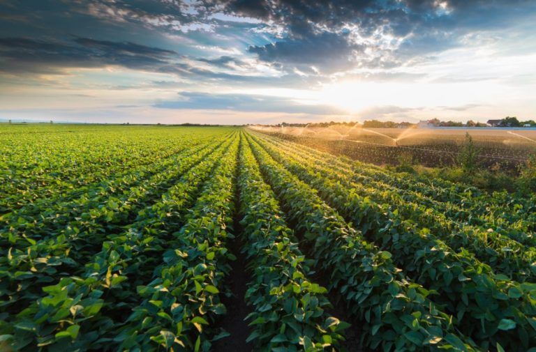 Historic expansion investment for Alberta irrigation infrastructure