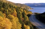 Newfoundland roads fall